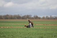 Frankrijk veldwerk 2014 maart 2